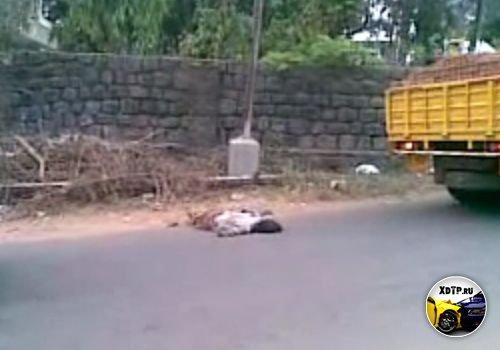 Грузовик переехал человека. Индия